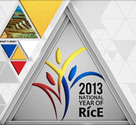 national year of rice 2013